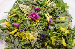 Wild edible herbs and flowers